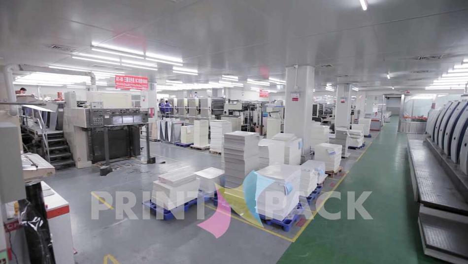 Printn-pack's Printing  Press