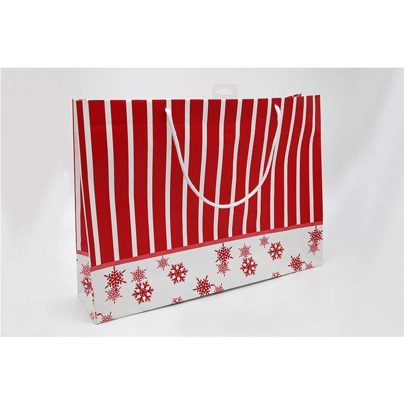 Customised Color Printed Fancy Paper Packaging Gift Bag